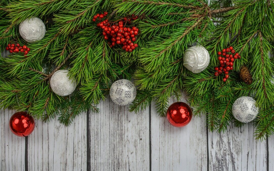 Weihnachts-News von Bücher mit Herz 💖